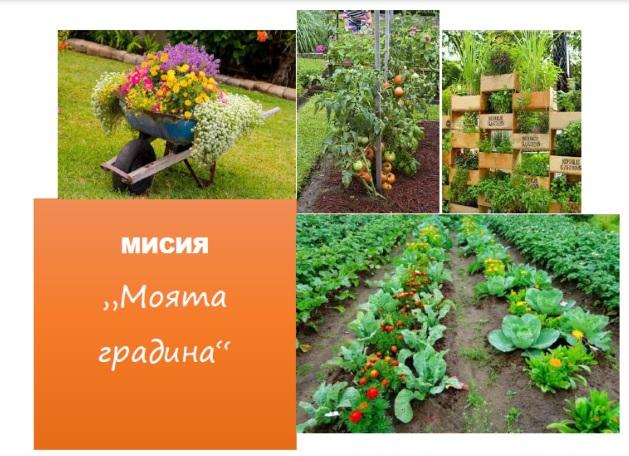 маята градина